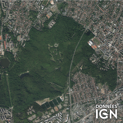 Département IGN - Satellite - Paris 75 - 1 : 25 000