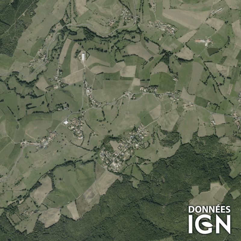 Département IGN - Satellite - Loire 42 - 1 : 25 000