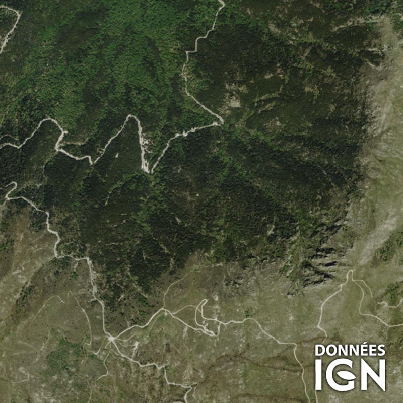 Département IGN - Satellite - Haute-Corse 2B - 1 : 25 000