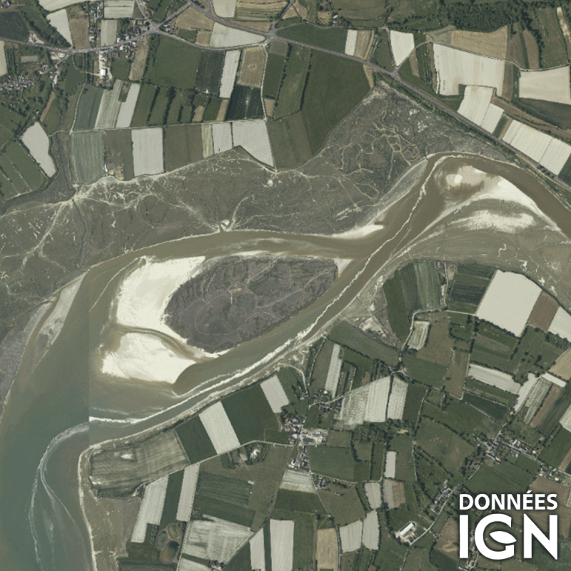 Département IGN - Satellite - Manche 50 - 1 : 25 000