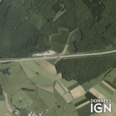 Département IGN - Satellite - Haute-Marne 52 - 1 : 25 000