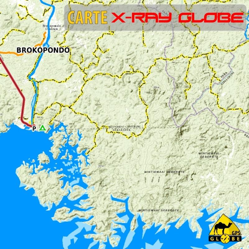 Suriname - X-Ray Globe - 1 : 100 000 TOPO Relief