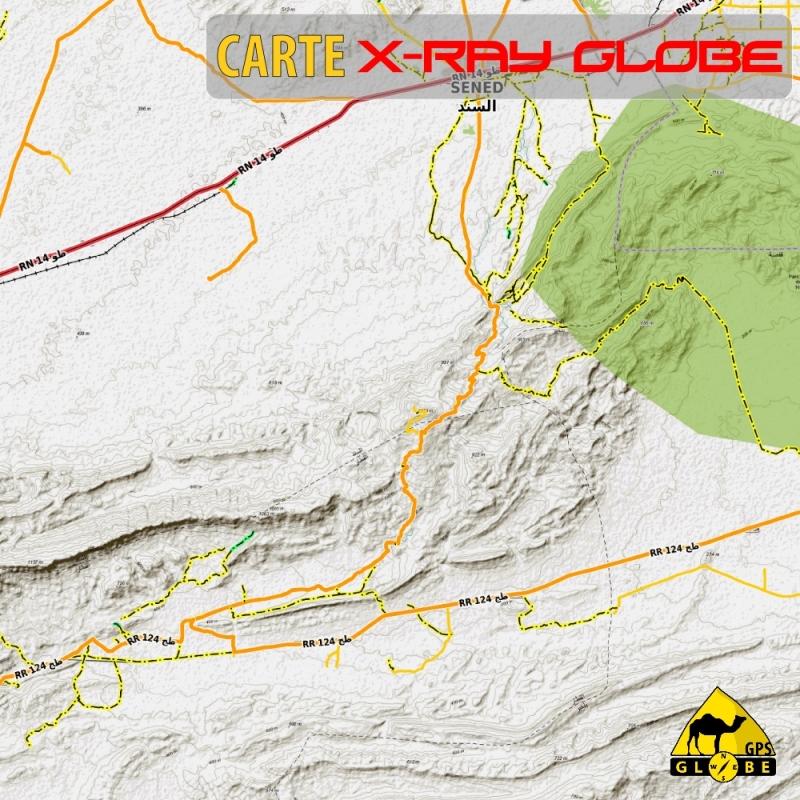 Tunisie - X-Ray Globe - 1 : 100 000 TOPO Relief