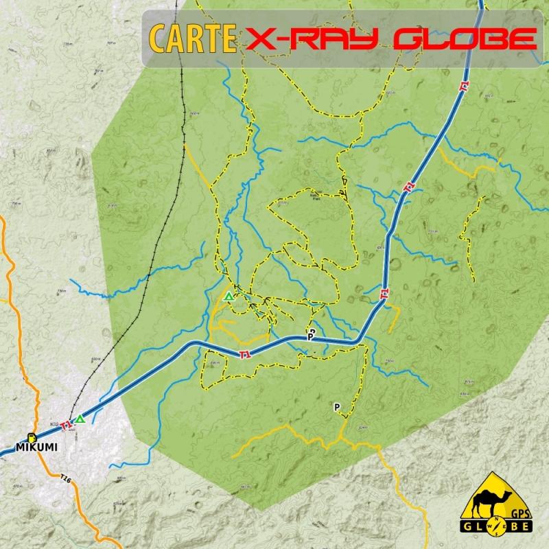 Tanzanie - X-Ray Globe - 1 : 100 000 TOPO Relief