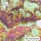 GlobeXplorer - Pack Alpes : France / Suisse / Italie - 1 : 25 000