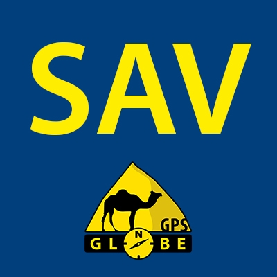 SAV Carte SD GPS Globe