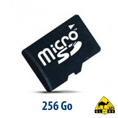 Carte micro SD - 256 GB